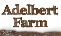 Adelbert Farm Asheville summer camps